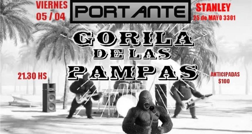 5/4 - PORTANTE + GORILAS DE LAS PAMPAS en Stanley